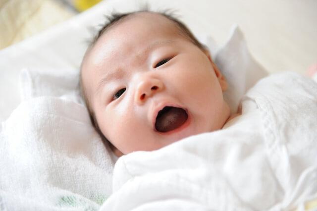 歯磨きを嫌がる乳児