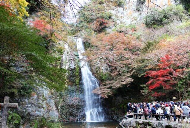 箕面滝の紅葉