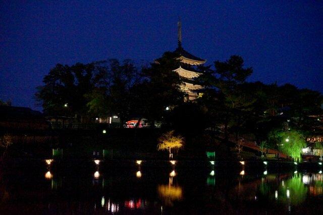 猿沢池のライトアップ