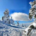 蔵王エコーライン2019雪の壁
